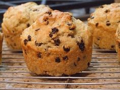 Great way to share irish soda bread!  The large recipe is too much!  I love muffins!
