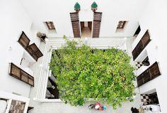 20 Beautiful Indoor Courtyard Gardens