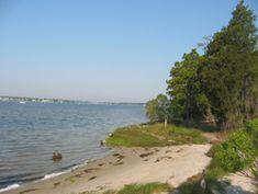 First landing state park trails. Virginia beach, VA