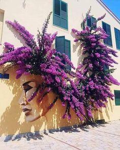 Street Art, Bougainvillea, Handmade Home, Public Art, Graffiti Art, Horticulture, Urban Art, Rue, Amazing Gardens
