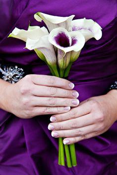 Flower Guide: Calla Lilies | Wedding Planning, Ideas & Etiquette | Bridal Guide Magazine--- I love this!