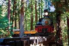 The authentically-preserved narrow-gauge steam engines that call Roaring Camp Railroads home are a throwback to the days when trains transported giant redwood logs out of the mountains. Today, the open-air Redwood Forest route takes you on a tour through the majestic forest, while the Santa Cruz line takes you right to the beach.  See more at Roaring Camp Railroads »