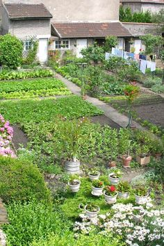 French backyard kitchen garden Also the French need to put out the washing to dry. In this small French village Pont-á-Moussons it is done in the back yard. Potager Garden, Garden Landscaping, Herb Garden, Backyard Kitchen, Edible Garden, Dream Garden, Big Garden, Garden Beds, Garden Planning