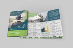 Bi-fold Brochure by