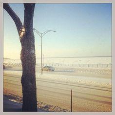 Promenade de la mer en hiver #Rimouski Bas Saint Laurent, Destinations, Photos, Country Roads, Canada, Usa, Plants, Outdoor, The Sea