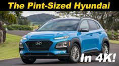 Download Hyundai Of St Augustine