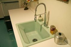 Thermocast washboard laundry sink for my laundry room---in sea mist. Faucet too. Done. Hope dog fits.