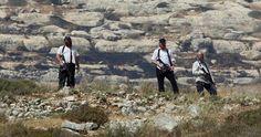 """Pemukim Yahudi larang warga Palestina memetik hasil panen zaitunnya  TEPI BARAT (Arrahmah.com) - Sekelompok pemukim Yahudi """"Israel"""" pada Senin (10/10/2016) pagi menyerang warga Palestina saat mereka menuju lahan pertanian mereka di desa Qaryout selatan Nablus.  Sumber-sumber lokal mengatakan kepada wartawan The Palestinian Information Center bahwa pemukim """"Israel"""" yang membawa kapak dan alat-alat tajam menyerang keluarga Saher Youssef dekat lahan pertanian mereka sambil memetik panen zaitun…"""