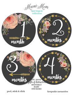 Hey, I found this really awesome Etsy listing at https://www.etsy.com/listing/248142819/gift-baby-girl-monthly-stickers-baby