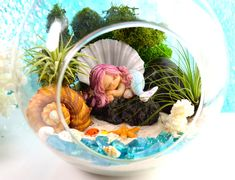 ♥´¨) ¸.•´ ¸.•*´¨)¸.•*¨) (¸.•´ (¸.•`♥~ Hush, little baby Mermaid sleeping. This precious little Mermaid is curled up on her favorite rock at the edge of the water, hidden by the moss and plants so that only the little crab and other sea creatures can see her. Kids will especially love this one! :) Includes: Little Mermaid on a rock, White Scallop Shell, Dark Green Moss,a piece of white coral, black rock, light blue sea glass, Rapana Bulbosa shell, mini sugar starfish, mini crab, sea shell...