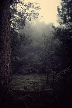 Dark and damp.