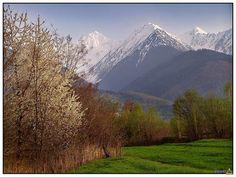 Fagaras Mountains, view from Vistea village, Romania http://alpinet.org/main/foto/showfoto_ro_t_simfonie-de-primavara_display_poze_what_zona_position_9_item_36593.html