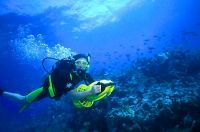 Using an underwater scooter while #SCUBA diving the reef in the #FloridaKeys