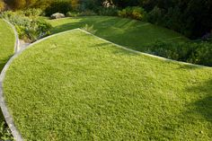 The challenge of this design was to create a usable, attractive garden from a steeply sloped triangular piece of land. My solution was to form three platforms o Table Mountain, How To Attract Birds, Garden Types, Contemporary Garden, Private Garden, Lawn, Golf Courses, Challenges, Architecture