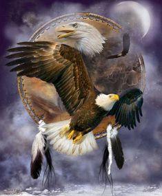Spirit Eagle Three