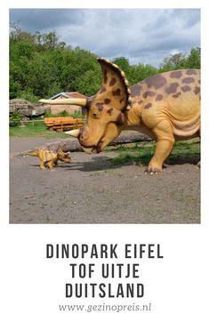 Hebben jouw kinderen ook een fascinatie met dino's? Bezoek dan zeker het Teufelsschlucht dinosauriër park in de Eifel. Dit park werd pas in 2015 geopend en is goed onderhouden. Onze op dat moment zesjarige dochter keek haar ogen uit maar ook voor oudere of juist jongere kinderen is het Eifel dinosauriërpark geschikt. Legoland, Turtle, Germany, Camping, Vacation, Places, Kids, Travel, Viajes