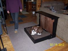 Big Dog Murphy bed