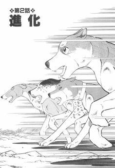 Wolf Sketch, Sasuke, Saga, Weed, Sketches, Draw, Anime, Silver, Animals