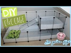 DIY C&C guinea pig cage │Alexandriasanimals - YouTube