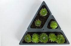 Items similar to Concrete Succulent Planter Set-- Triangular on Etsy