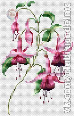 Cross Stitch Samplers, Counted Cross Stitch Patterns, Cross Stitch Designs, Cross Stitching, Cross Stitch Embroidery, Embroidery Stitches Tutorial, Embroidery Flowers Pattern, Ribbon Embroidery, Flower Patterns