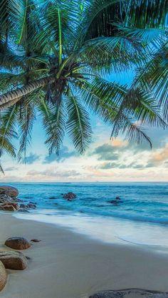 Beachy wallpaper iphone summer backgrounds palm trees Ideas for 2020 Beachy Wallpaper, Summer Wallpaper, Travel Wallpaper, Beautiful Wallpaper, Wallpaper Desktop, Beach Pictures Wallpaper, Ocean Wallpaper, Wallpaper Backgrounds, Landscape Photography