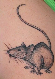 Rat tat. Oh I love this so much!!