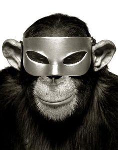 Monkey & Mask