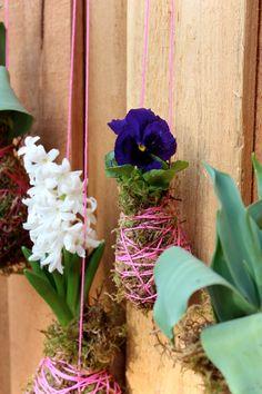 DIY A Spring String Garden by poppytalk #Garden #String_Planter