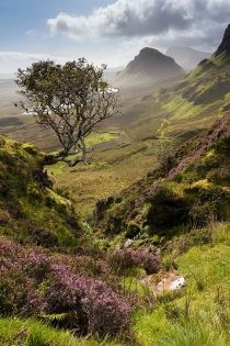 Ile de Skye, Ecosse - Pascal Bourguignon