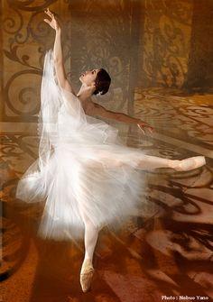 Ballet Images, Ballet Pictures, Dance Pictures, Ballet Art, Ballet Dancers, Ballerinas, Ballet Photography, Photography Poses, Ballerina Painting