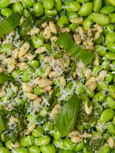 Fresh Fava Salad  A healthy protein-packed recipe