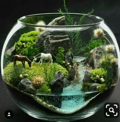 26 amazing diy mini terrarium garden projects and ideas 26 26 amazing diy mini terrarium garden projects and ideas 26 Mini Terrarium, Terrarium Scene, Terrarium Ideas, Terrarium Wedding, Fairy Terrarium, Crystal Terrarium Diy, Succulent Terrarium Diy, Indoor Water Garden, Indoor Plants