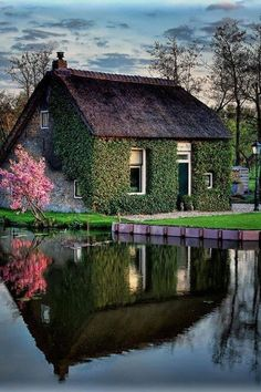 Old Dutch home and garden.