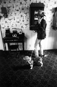 Bob Dylan Always Picked Up Stray Dogs. Including This Beagle. With Dylan On The Rolling Thunder Revue, 1975 Top 14, Bucky, Bd Cool, Roger Mcguinn, Dylan Dog, Mick Ronson, Joan Baez, Rolling Thunder, Blues
