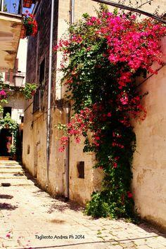 Summer in Oria - Puglia, Italy