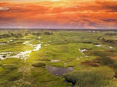 Botswana's lush Okavango Delta.  The 2.3 million hectare marshy landscape is unique because it floods each year during the dry season, the UNESCO committee says. Some of the world's most endangered and beloved species of large mammals live there.  All told, around 200,000 species of mammals, 400 types of birds and 70 different fish species live there, making up one of sub-Saharan Africa's most diverse ecosystems, according to the African Wildlife Foundation.