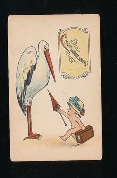 ~Stork & Baby Vintage greeting~Postcard-c.1910-Unused-a158