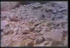 Weathering and Erosion Discovery Education Video