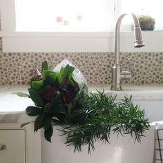 These whimsical stems seem to be enjoying themselves. #alequestrianestate #freshflorals #interiordesign #farmsink #designedbyalicelane