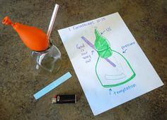 Science Experiment, Temptation, and the Bible | Hip Homeschool Moms