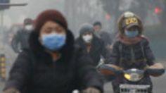 Maioria das mortes está ocorrendo na China e Índia, economias que estão se desenvolvendo rapidamente, dizem pesquisadores.