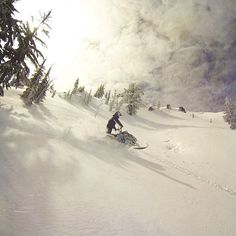 Mountain Sleddin' #boltups #whatsyourplayground? #snow  Visit our site www.boltups.com