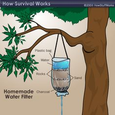 "HowStuffWorks ""Jungle Survival: Finding Water"" Homemade diy water filter homesteading survival"