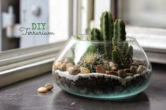 DIY terrarium • Un jardin d'intérieur... www.ohlovelyplace.com