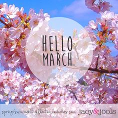 Hello March!   Spring/Summer 15 collection launches soon!   www.jacyandjools.co.uk  #ss15 #springsummer #newcollection #march #spring #motheringsunday #giftformum #mumgifts #specialmum #stackthemup #stackable #sterlingsilver #ball #bracelets #silver #sterlingsilver #cheshire #altrincham #online #wiwt #jotd #ootd #instastyle #instafashion #fashiongram #lookbook #fashionista #fbloggers #fashionbloggers #follow #jewellery #spiritual #jacyandjools #flower #pink #pinkflower