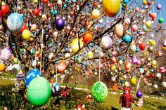 Quite an impression:  Pâques en France, Trees decorated for Easter