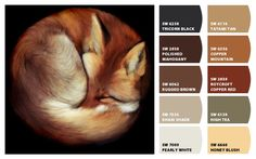 Fox Color Palette Inspiration Chip It! by Sherwin-Williams – ChipCard by Christy C.