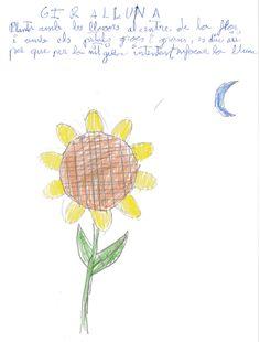 GIRALLUNA: Planta con las semillas en el centro de la flor, con pétalos amarillos y grandes. Se llama así porque por la noche gira intentando enfocar a la luna. Curro.