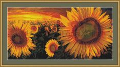 Flames of Life sunflower field cross stitch by UnconventionalX